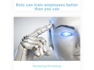 4-20 leads daily from our AI cold calling  for your sales team